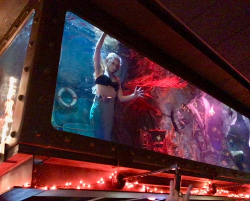 A mermaid performs in a Dive Bar aquarium