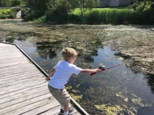 Arius goes fishing