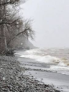 In the cold mist of Lake Ontario, birds fly near McIntyre Bluff